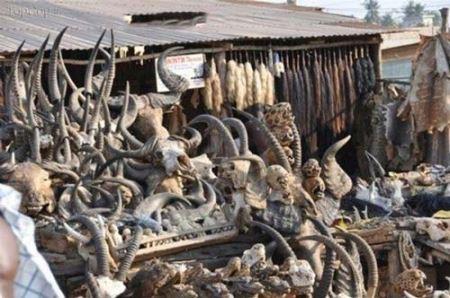 عکس های باورنکردنی از حال بهمزن ترین بازارهای کشورهای خارج