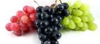 دو خوراکی فوق العاده برای رفع کم خونی