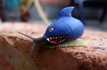 اقدام جالب یک هنرمند برای دیده شدن حلزون ها! (عکس)