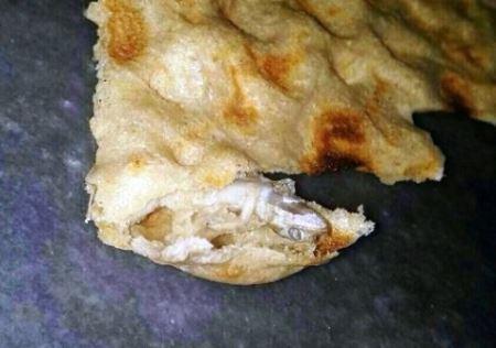 ماجرای مارمولک پخته در نان سنگک (عکس)