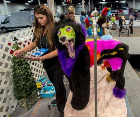 انتخاب خنده دارترین سگ در نمایشگاه سالانه امریکا (عکس)