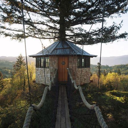خانه ی درختی که از تماشای آن سیر نمی شوید! عکس