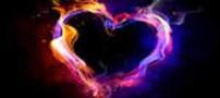 وجود نوعی سلول بنیادی در لایه ای از قلب