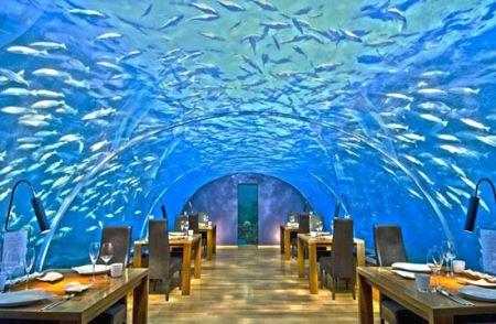 بهترین رستوران های زیر آب (عکس)