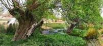دریاچه و چشمه زیبای غربال بیز در یزد (عکس)