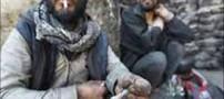 ماده مخدر مورد استفاده داعشی ها