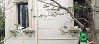 عجیب ترین خانه دنیا ساخته شد (عکس)