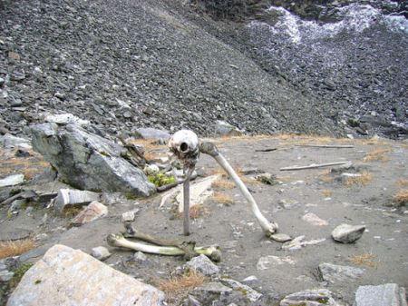 دریاچه ای مرموز پر از اسکلت انسان ! (عکس)