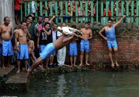 وحشتناک ترین فستیوال جهان در نپال رقم خورد (16-)