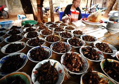 عجیب ترین غذاهای سرو شده دنیا را ببینید (عکس)