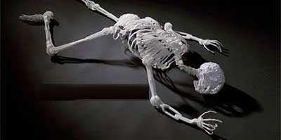 اندام اسکلتی بی نظیر انسان ! (عکس)