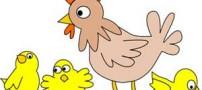 شعر کودکانه و زیبای مرغ قشنگم