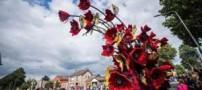 جشنواره دیدنی و زیبای گل و گیاه در هلند