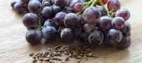 هسته ی انگور چه خواصی دارد؟