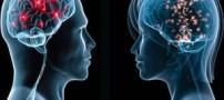 آیا مغز خانم ها کوچکتر از آقایان است؟