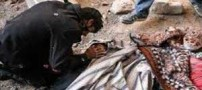 افزایش شمار جان باختگان تهران