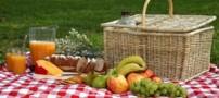 معرفی غذاهایی مخصوص مسافرت