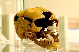 رونمایی از چهره 8 هزار ساله یک زن لرستانی !