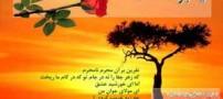 والیپرهای بسیار زیبای شهادت امام جواد الائمه