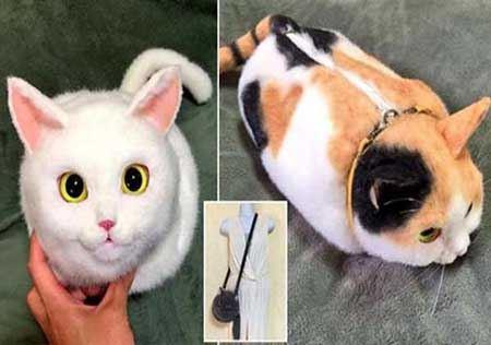 گربه هایی که کیف دستی این خانم ها شدند (عکس)