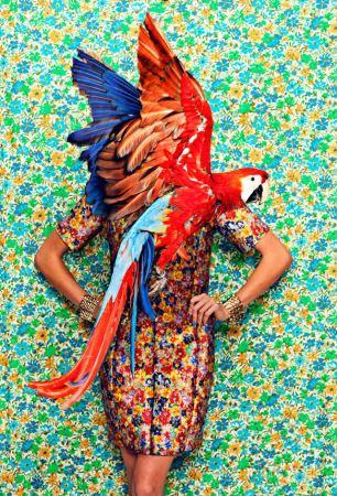 عکاسی مدهای بسیار زیبا برای برند Juco