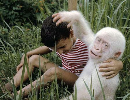 عکس های حیرت انگیز دنیای بی رنگ حیوانات !
