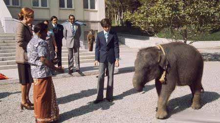 عکس های ناب آلبوم دیده نشده محمد رضا پهلوی با خانواده