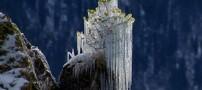 عکس های دیدنی و زیبا از برف و یخبندان زمستانی