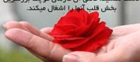 جملاتی الهام بخش و زیبا برای زندگی! (قسمت 30)