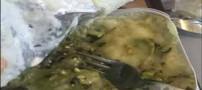 جنجال سرو غذاهای چندش آور در هواپیماها (عکس)