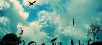 دل نوشته های زندگی زیباست….