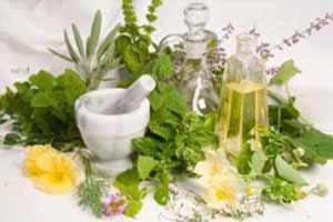 گیاهانی که باعث کاهش کلسترول می شود