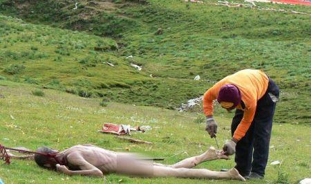 مردمی که عزیزانشان را به لاشخورها می دهند! (عکس 16-)
