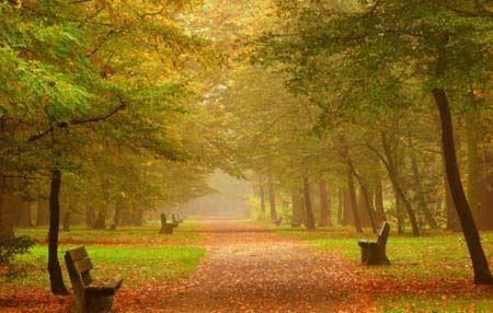 عکس های زبیاترین مناظر خیره کننده پاییز