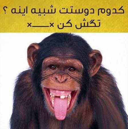 عکس نوشته های طنز و خنده دار در اینستاگرام