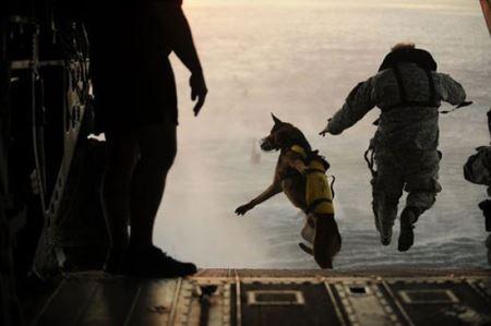 عکس های وحشتناک ترین تمرین های نظامی دنیا 18+