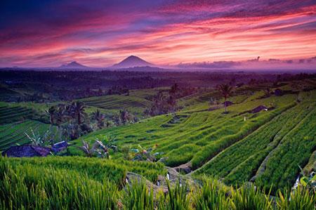 سفر توریستی و گرشگری به بالی (تصاویر)