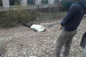 ابهام قتل هولناک دختری جوان در بوشهر