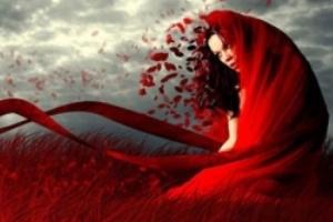 عشق دانی که سرآغازش چیست ؟