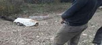 معمای عکس جسد یک دختر در فضای مجازی