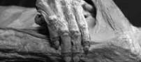 رویدادهای ترسناک تدریجی بدن پس از مرگ