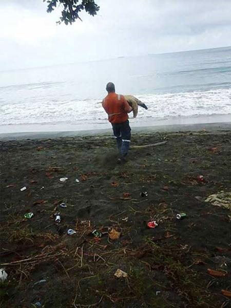 مردی که لاکپشتهای صید شده برای خوردن را نجات می دهد (عکس)