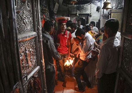 معبدی در هند که 20،000 موش سرباز دارد! (عکس)