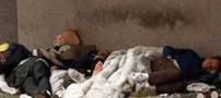 خورده شدن مردی توسط سه کارتن خواب به شدت گرسنه (عکس)