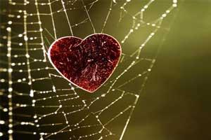 شعر عاشقانه دلم را از سر راه نیاورده ام…
