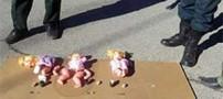 کشف عروسک های بمبگذاری شده داعش توسط سپاه