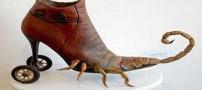 عجیب و غریب ترین کفشهای ساخته شده در دنیا (عکس)