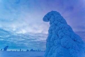 تصاویر زیبای پارک ملی ریسیتونتوری فنلاند در زمستان