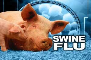 آنفلوانزاي خوکی در کشور، همه چیز درباره آنفلوانزاي خوكي