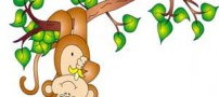 قصه زیبای کودکانه با موضوع میمون بازیگوش